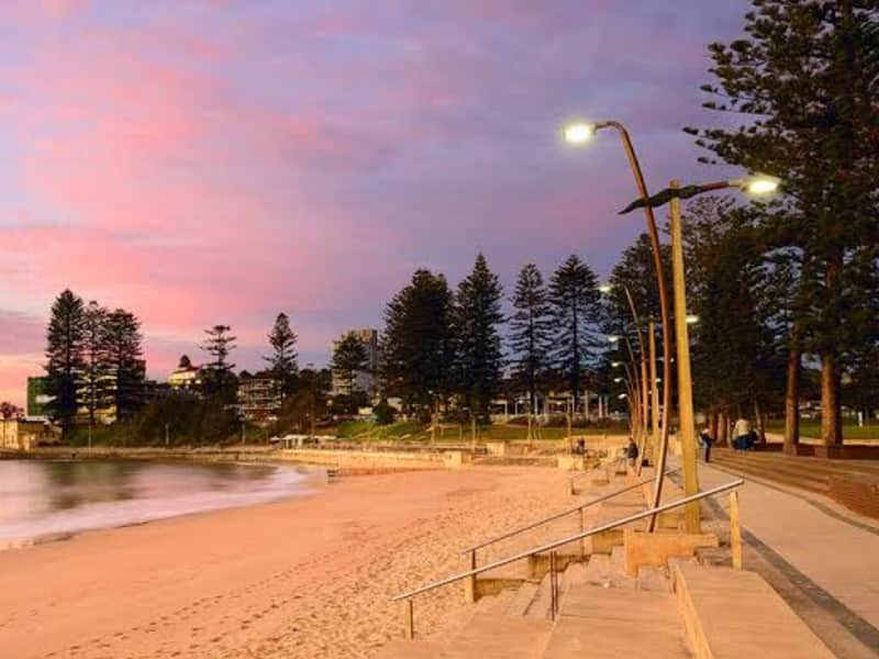 Housesitting assignment in Dee Why, New South Wales, Australia
