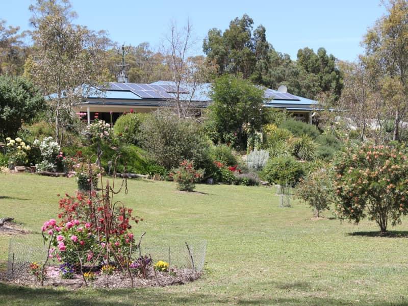 Housesitting assignment in Castlemaine, Victoria, Australia