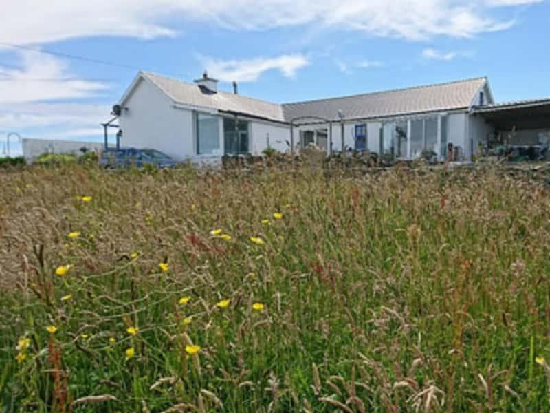 Housesitting assignment in Kilbaha, Ireland