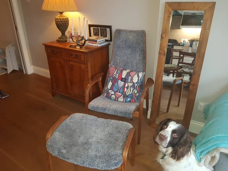 Housesitting assignment in Barnes, United Kingdom
