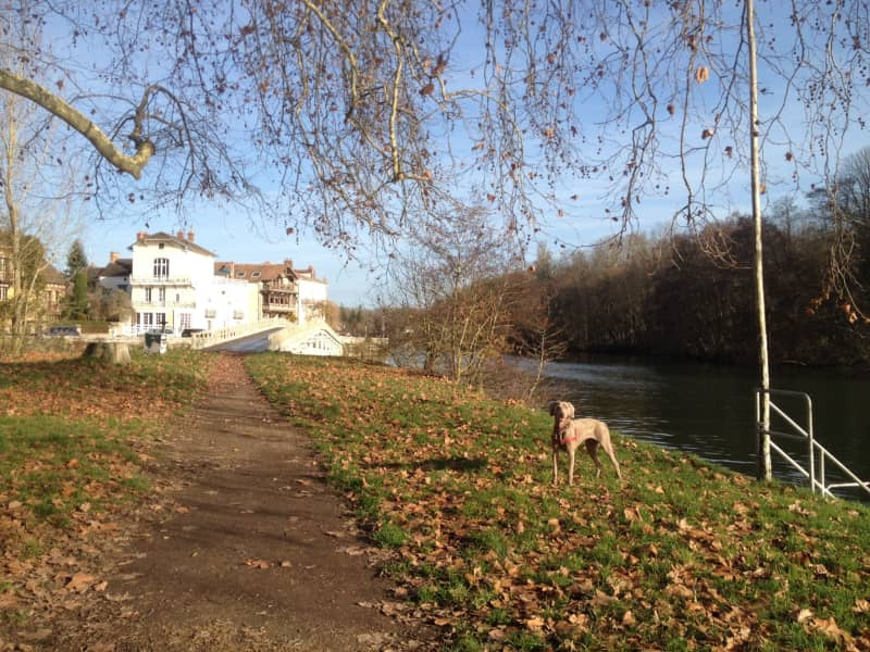 Housesitting assignment in Samois-sur-Seine, France