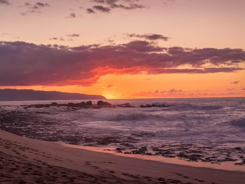 Housesitting assignment in Waialua, Hawaii, United States