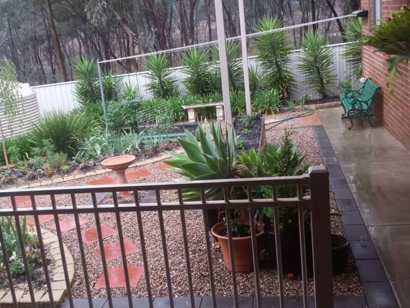 Housesitting assignment in Kangaroo Flat, Victoria, Australia