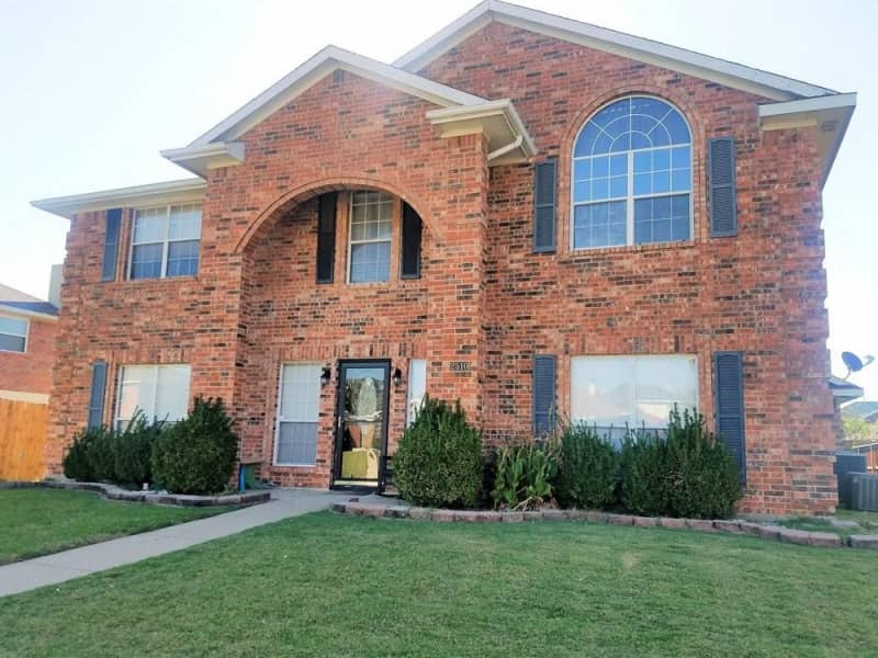 Housesitting assignment in Sachse, Texas, United States
