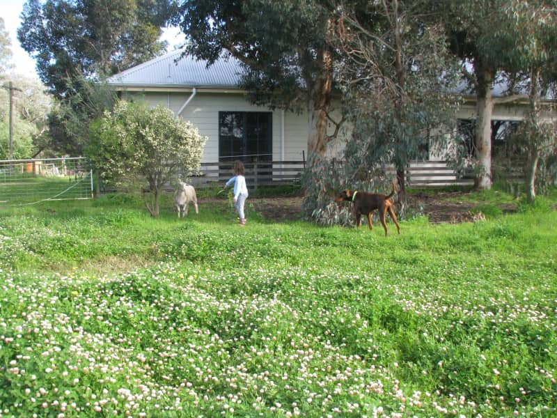Housesitting assignment in Ludlow, Western Australia, Australia