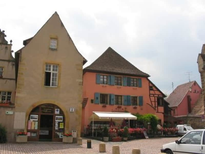 Housesitting assignment in Colmar, France
