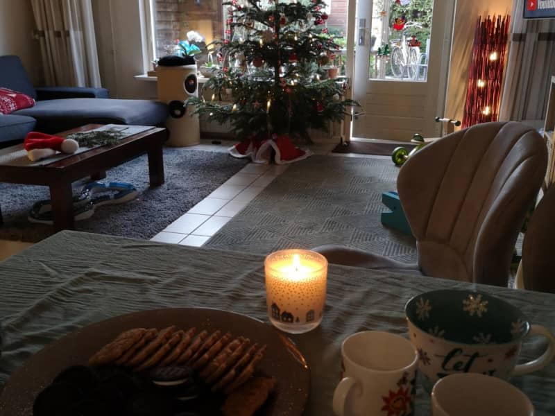 Housesitting assignment in Heemstede, Netherlands