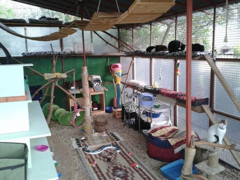 Housesitting assignment in Fethiye, Turkey
