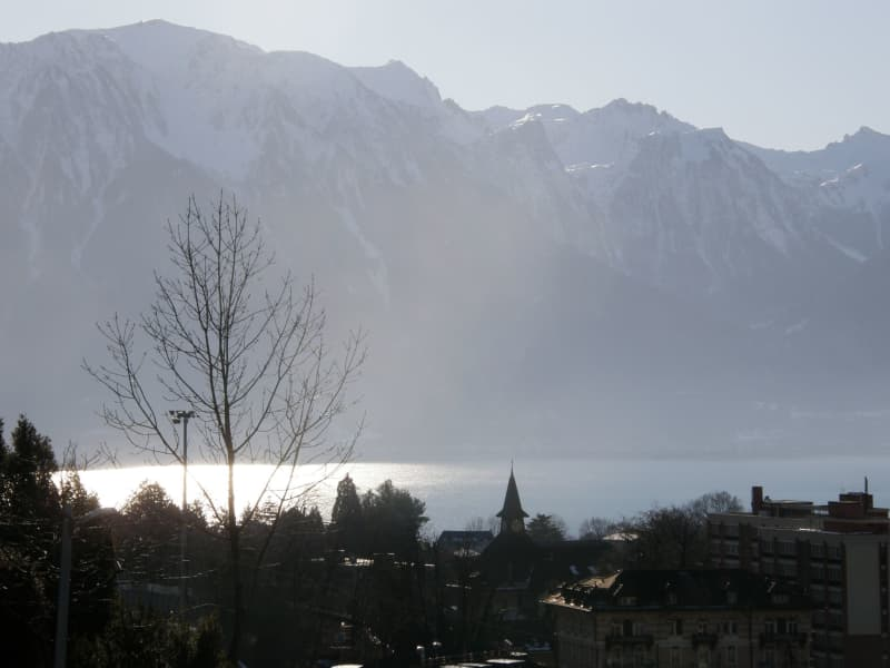 Housesitting assignment in Montreux, Switzerland