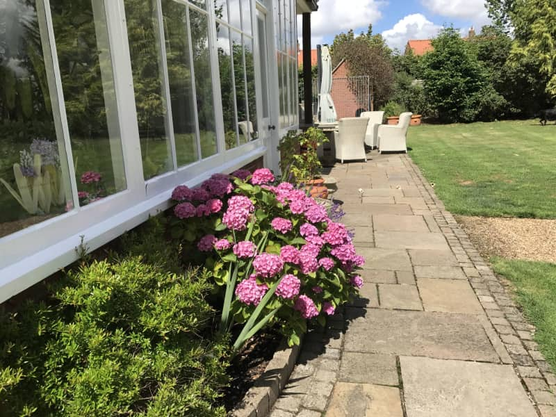 Housesitting assignment in East Dereham, United Kingdom