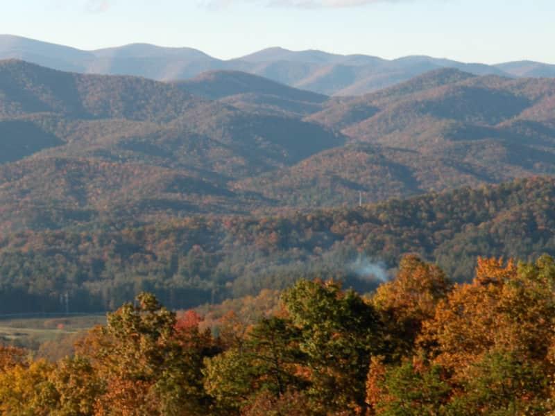 Housesitting assignment in Brevard, North Carolina, United States