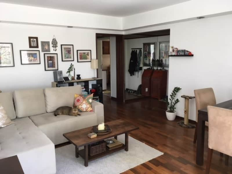 Housesitting assignment in Porto Alegre, Brazil