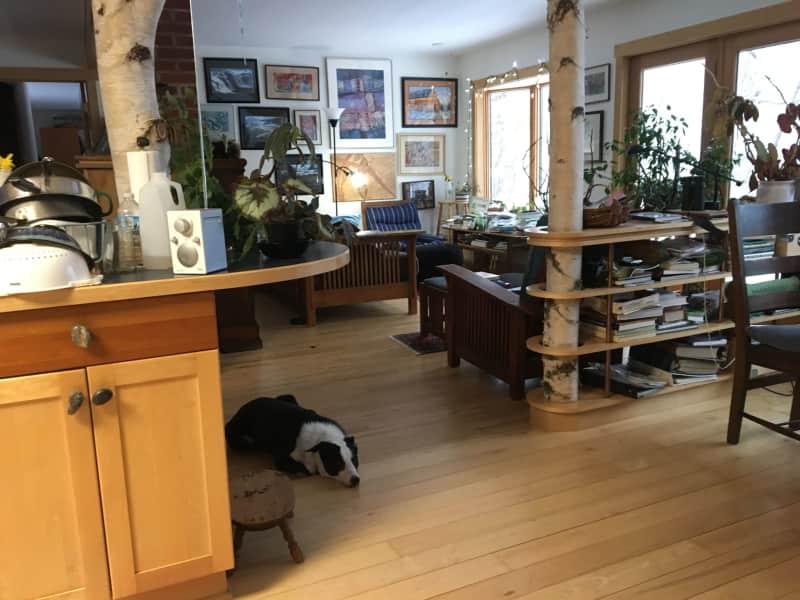 Housesitting assignment in Calumet, Michigan, United States