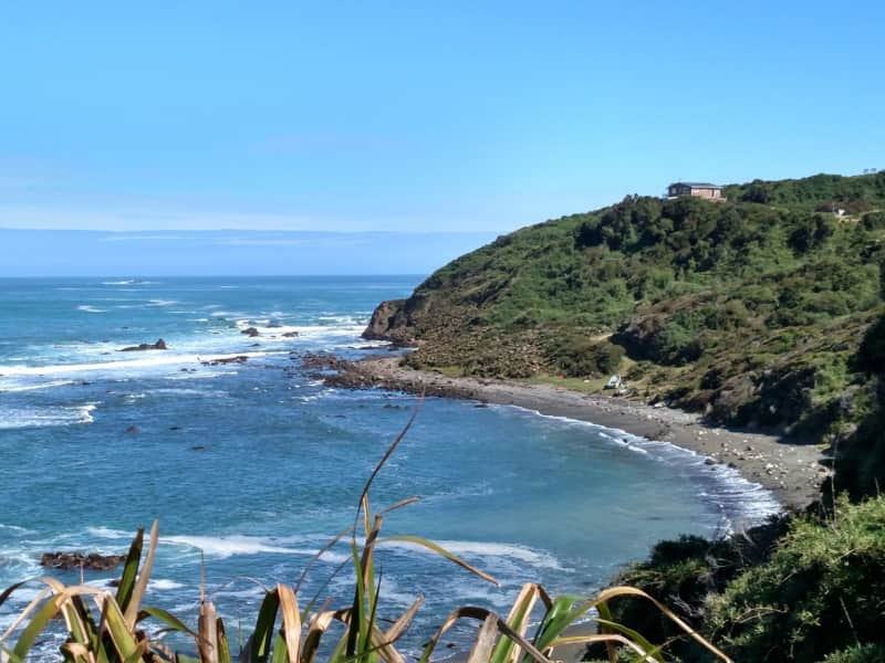 Housesitting assignment in Pumillahue, Chile