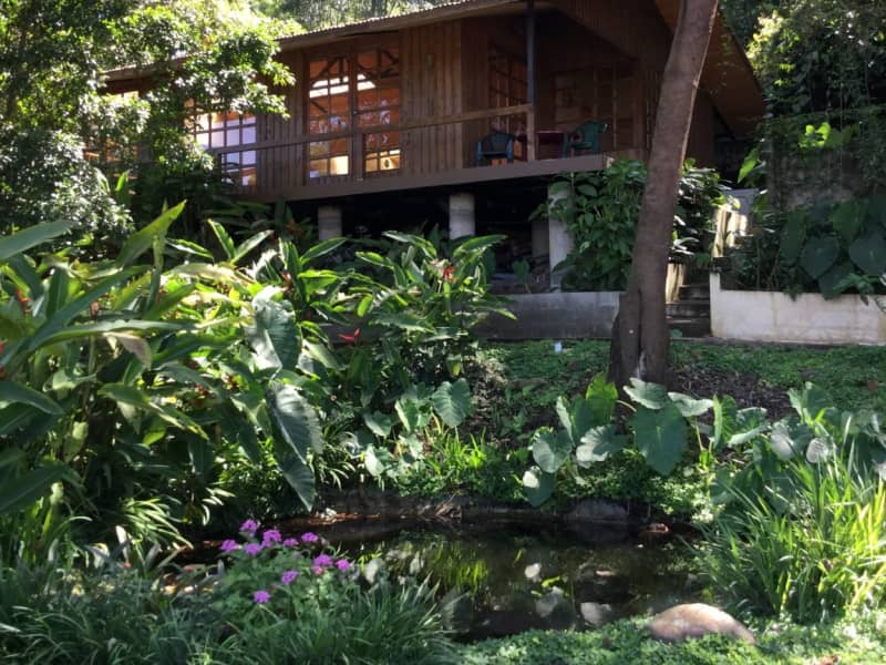 Housesitting assignment in San Marcos, Costa Rica