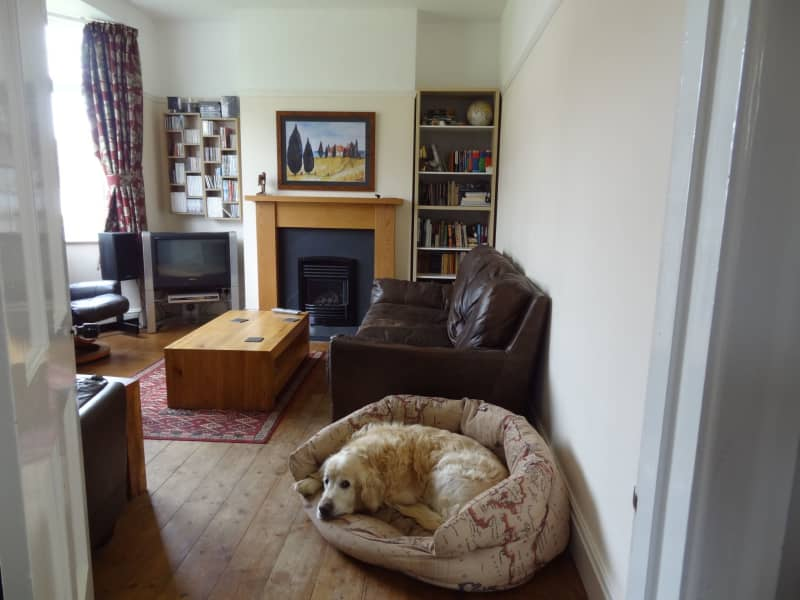 Housesitting assignment in The Mumbles, United Kingdom