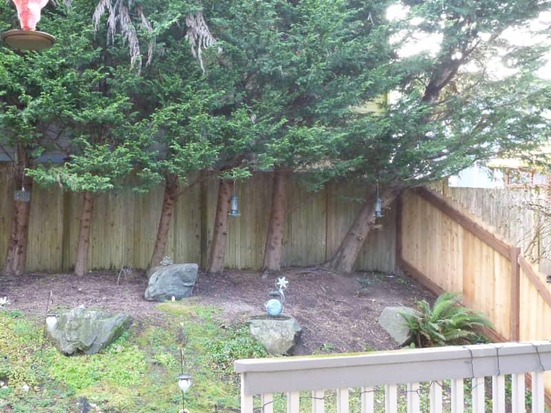 Housesitting assignment in Everett, Washington, United States