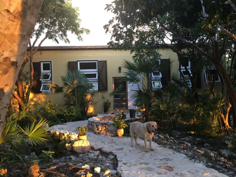 Housesitting assignment in Gregory Town, Bahamas
