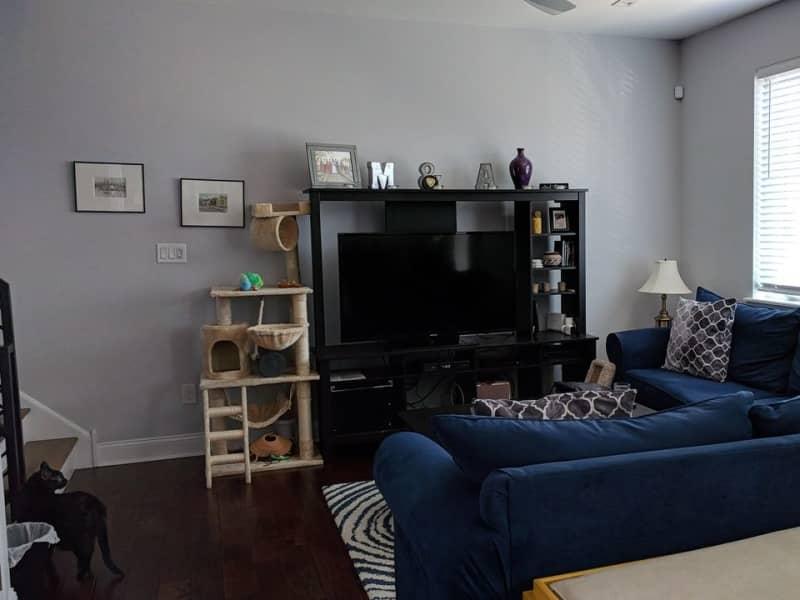 Housesitting assignment in Philadelphia, Pennsylvania, United States