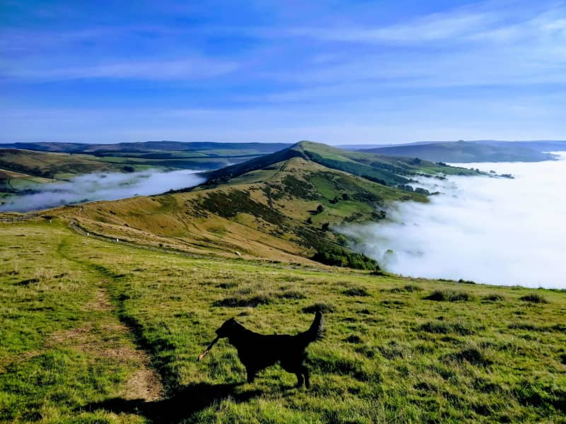 Housesitting assignment in High Peak, United Kingdom