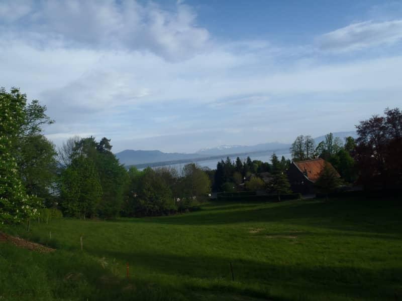 Housesitting assignment in Prangins, Switzerland
