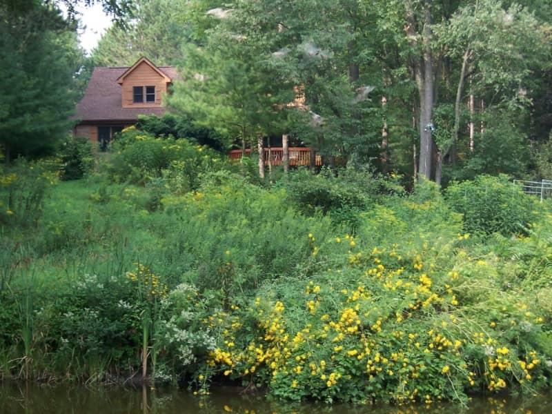 Housesitting assignment in Brighton, Michigan, United States
