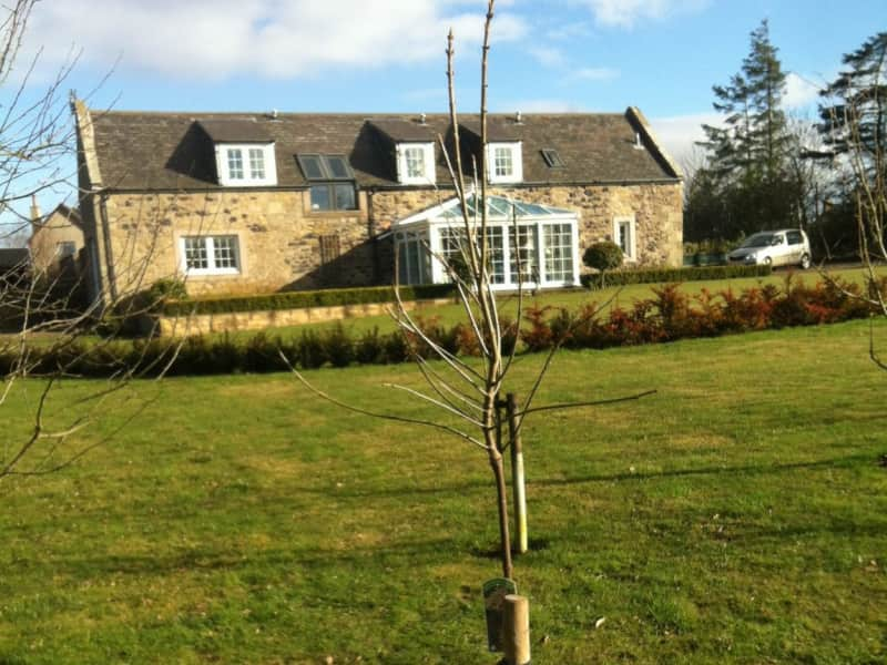 Housesitting assignment in Coldstream, United Kingdom