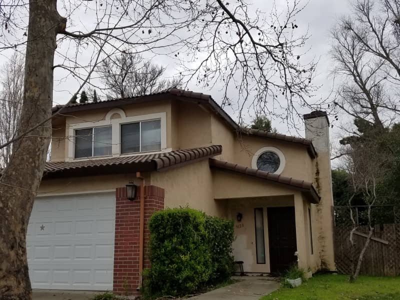 Housesitting assignment in Sacramento, California, United States