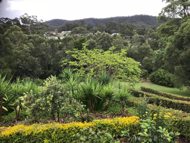 Housesitting assignment in Nerang, Queensland, Australia