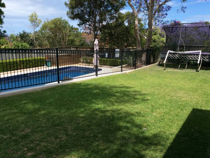 Housesitting assignment in Roseville Chase, New South Wales, Australia