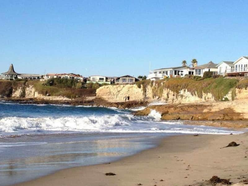 Housesitting assignment in Santa Cruz, California, United States