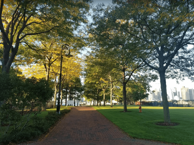 Housesitting assignment in Boston, Massachusetts, United States