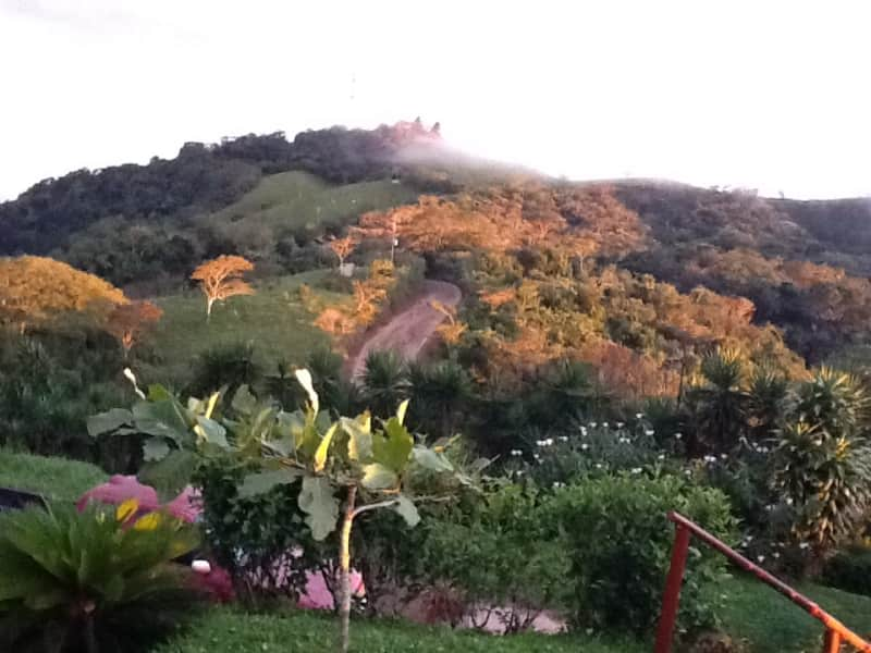 Housesitting assignment in Nicoya, Costa Rica