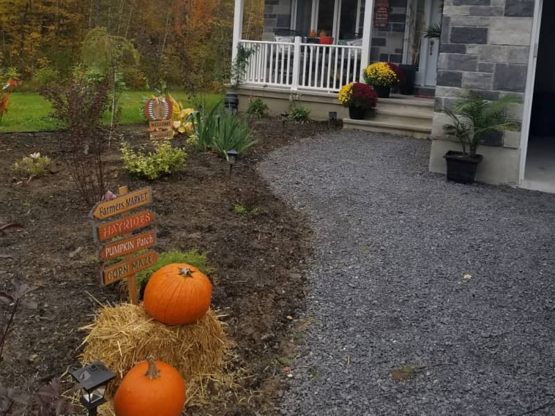 Housesitting assignment in Casselman, Ontario, Canada