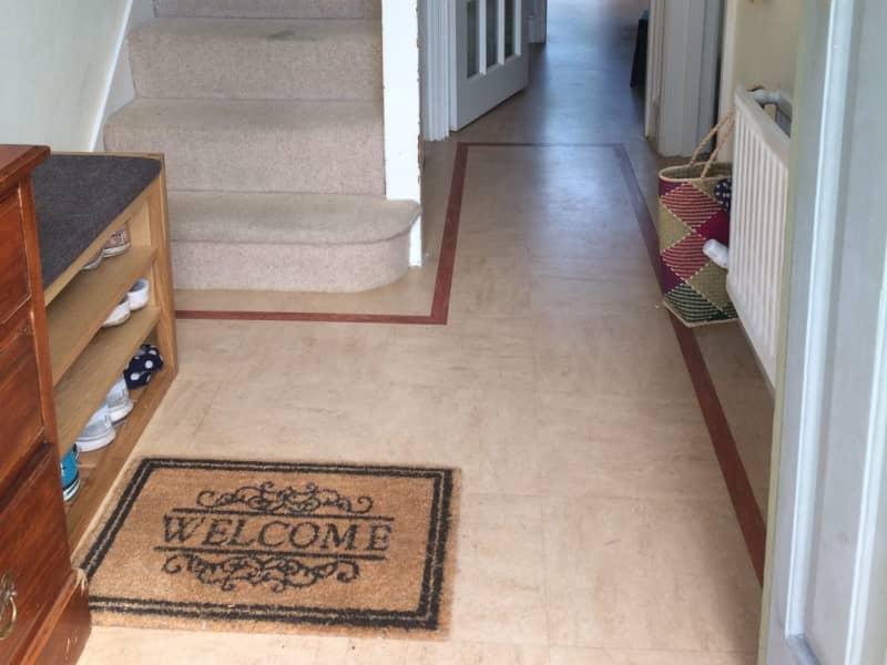 Housesitting assignment in Tottenham, United Kingdom