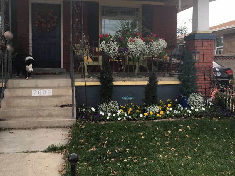 Housesitting assignment in Midvale, Utah, United States