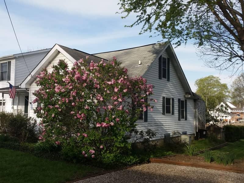 Housesitting assignment in Hebron, Ohio, United States