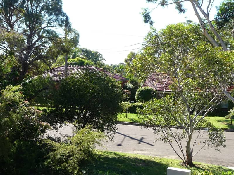 Housesitting assignment in Gymea, New South Wales, Australia
