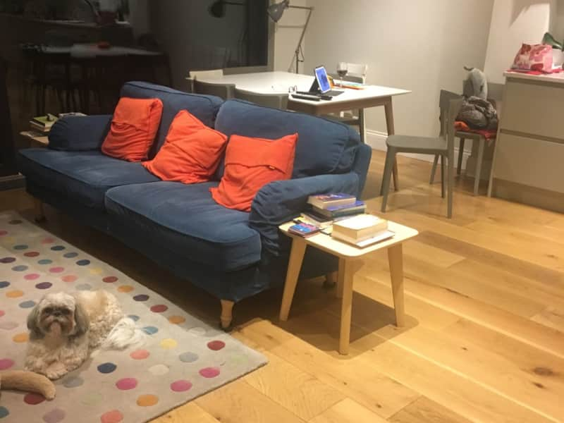 Housesitting assignment in Clontarf, Ireland