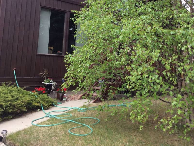 Housesitting assignment in Olds, Alberta, Canada