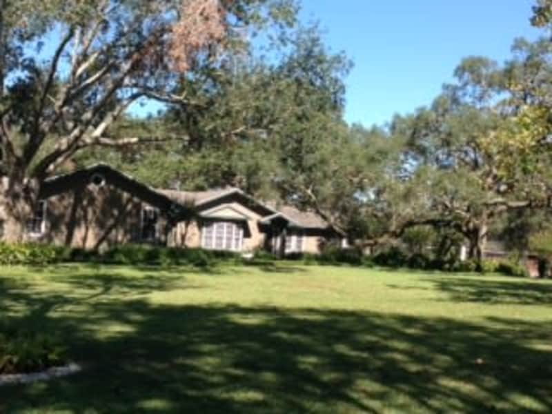 Housesitting assignment in Apopka, Florida, United States