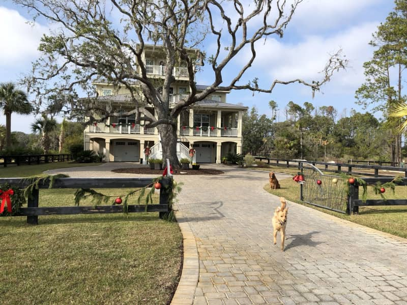 Housesitting assignment in Hilton Head Island, South Carolina, United States