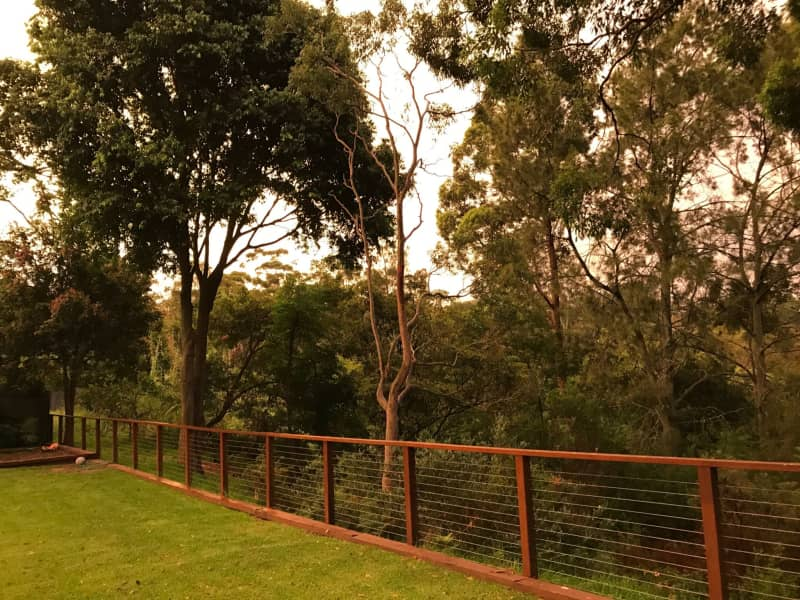 Housesitting assignment in Frenchs Forest, New South Wales, Australia