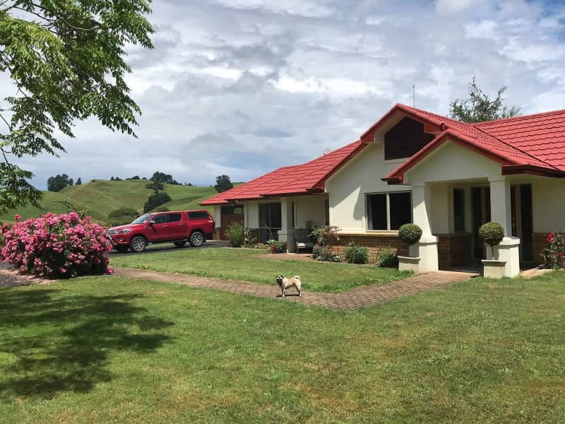 Housesitting assignment in Rotorua, New Zealand