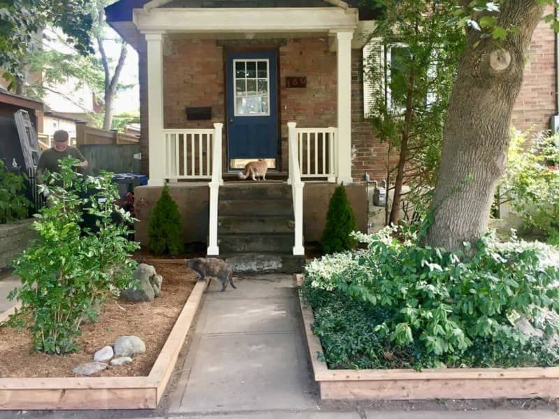 Housesitting assignment in University of Guelph, Ontario, Canada