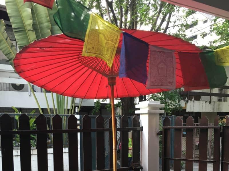 Housesitting assignment in Bangkok, Thailand