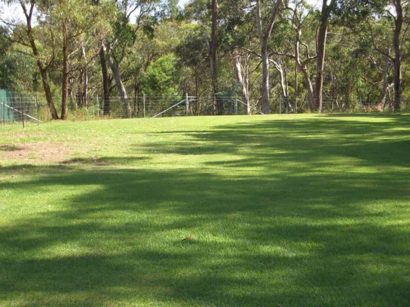 Housesitting assignment in Bargo, New South Wales, Australia