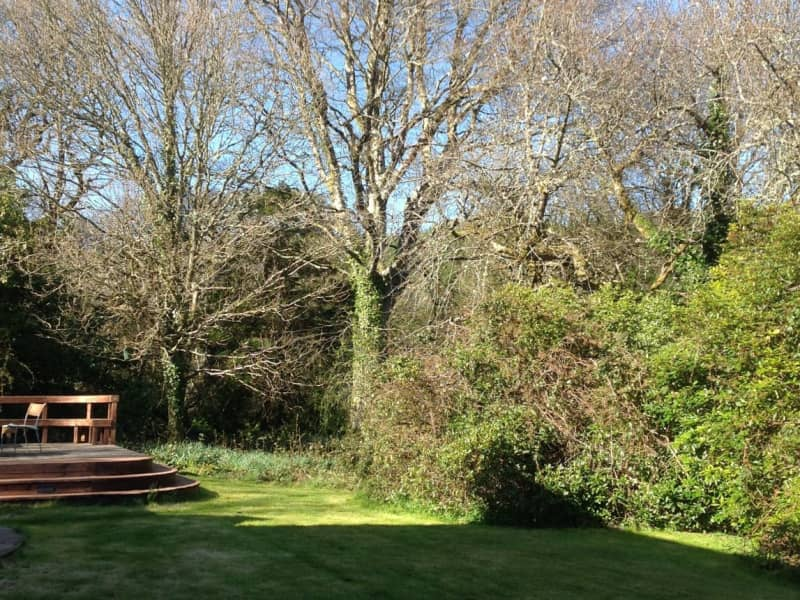Housesitting assignment in Laragh, Ireland