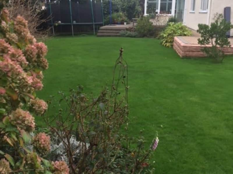 Housesitting assignment in Porthcawl, United Kingdom