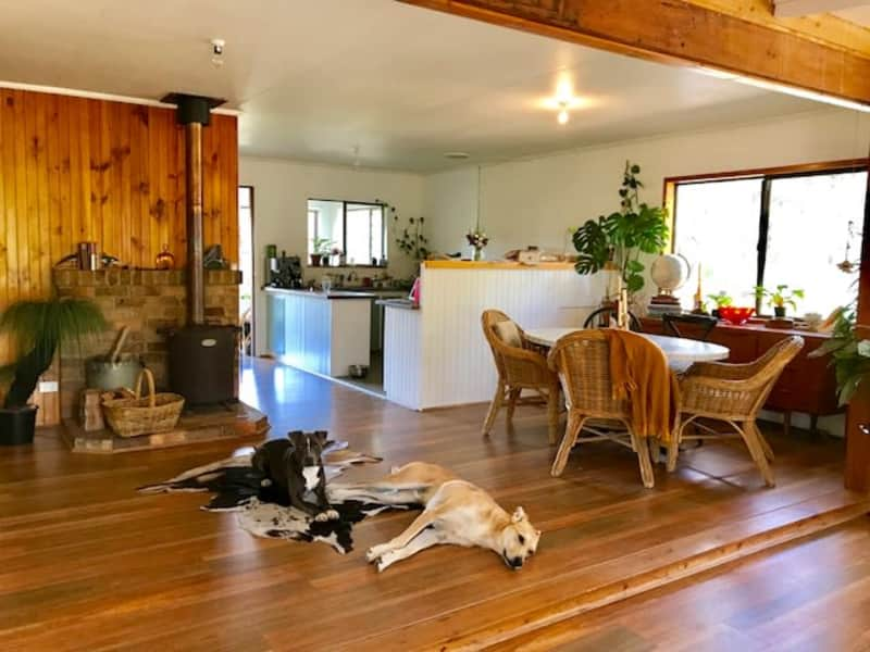Housesitting assignment in Wingello, New South Wales, Australia